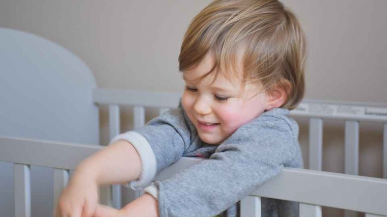 Your Little One Safety Must Haves